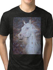 Habib Shael -- Akhal Teke Stallion Tri-blend T-Shirt