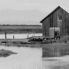 Northwest Barn by Samuel Schaar