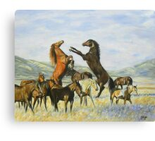 The Fight Is On Canvas Print