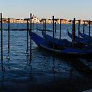 Evening in Venice by hans p olsen