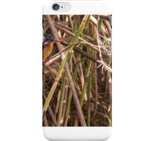 Malachite Kingfisher iPhone Case/Skin