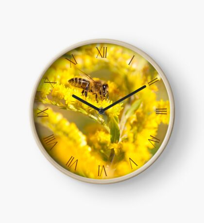 Bee sitting on Goldenrod Clock