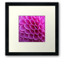Pink Puzzle Framed Print