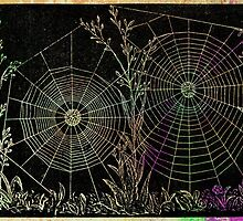Morning Dew Spiderwebs by paperwitch