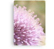 Lilac Flower Romantic Macro Photograph Canvas Print