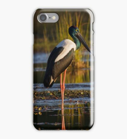 Sunlit iPhone Case/Skin