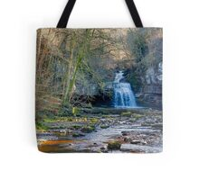 Autumn at Cauldron Falls Tote Bag