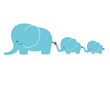 Elephant family following each other by berlinrob