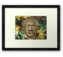 Mister Autumn Framed Print