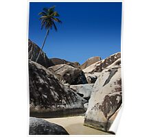 Boulders and Palm Trees Poster