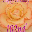 Happy 102nd Birthday Flower by martinspixs