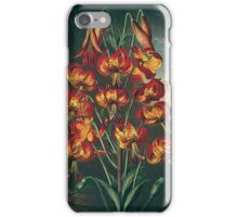 The Suberb Lily iPhone Case/Skin