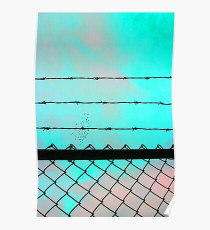 Blue Acid Sky & Barbed Wire Poster