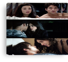 Scallison [Cuddling] Canvas Print