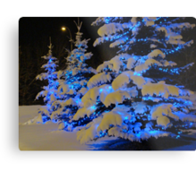 The Beauty Of Winter Metal Print