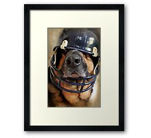Ready for the Superbowl Framed Print
