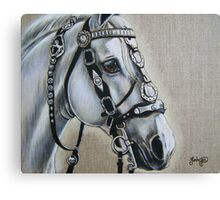 Well Decorated Canvas Print