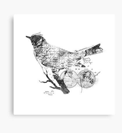 Bird Wanderlust Black and White Canvas Print