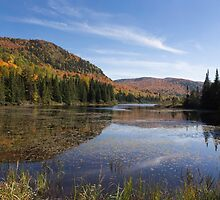 Fall colours in Canada by Josef Pittner