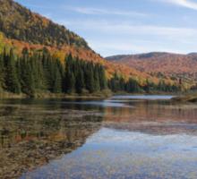 Fall colours in Canada Sticker