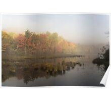 Fall colours over a lake in the early morning Poster