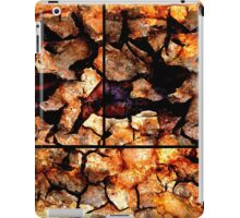 Steel Crust iPad Case/Skin