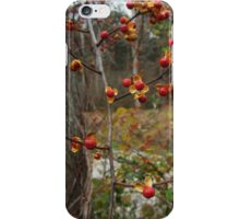Autumn Bittersweet iPhone Case/Skin