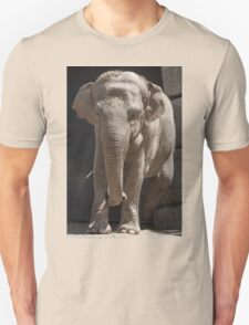 elephant at the zoo T-Shirt