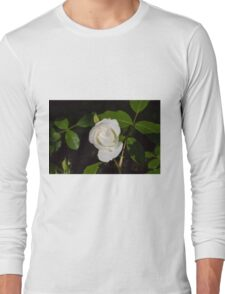 roses in the garden Long Sleeve T-Shirt