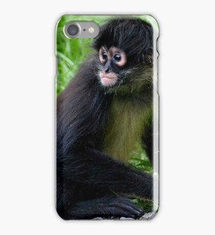 Baby Spider Monkey iPhone Case/Skin