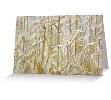 Whispering Winds... Greeting Card