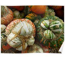 Turks Caps Gourd Poster
