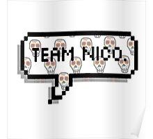 Team Nico.  Poster