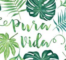 Tropical Pura Vida Palm Leaves and Monstera Watercolor Sticker