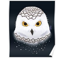Snow Owl Poster