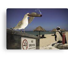 Seagull Seagar Canvas Print