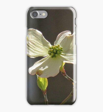 Hawktree Dogwood iPhone Case/Skin