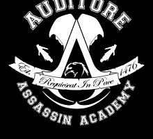 Auditore Assassin Academy by DrRoger