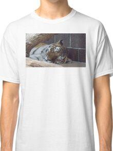 Sleeping Tiger Classic T-Shirt