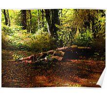 Autumn Dawn - East Haddam Poster