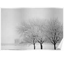 Wintry Trees Poster