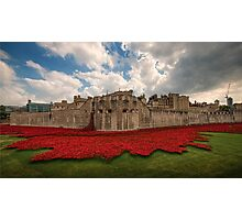 Tower of London Remembers.  Photographic Print