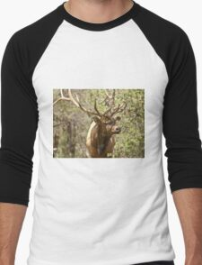 Big Bull Men's Baseball ¾ T-Shirt