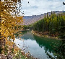 North Fork River of the Flathead River by Fran Riley