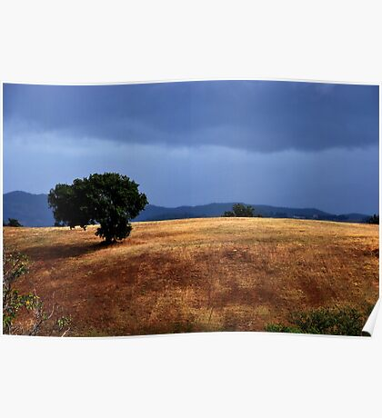 A Tree on the Hill Poster