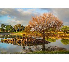 Reflective Pond Photographic Print