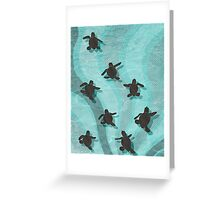 Loggerhead Sea Turtle Hatchlings Greeting Card