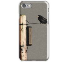 Rook on a wire iPhone Case/Skin