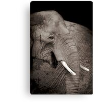 Giants of the plains   Canvas Print