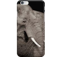 Giants of the plains   iPhone Case/Skin